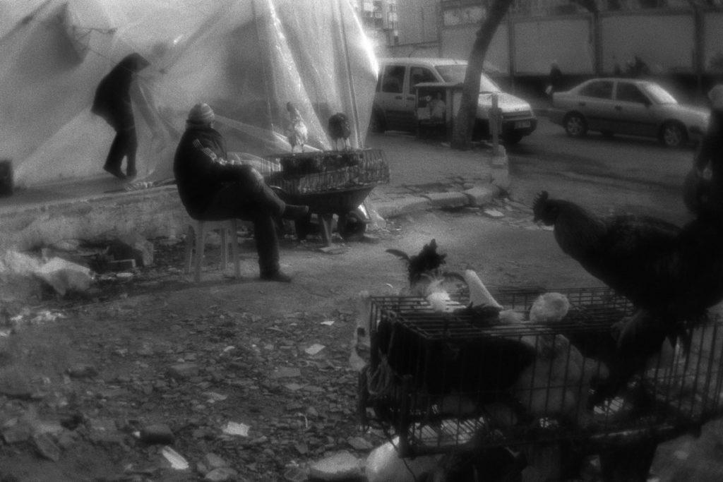 Poultry dealers near the marketplace of Tekirdag town. Turkey, 1